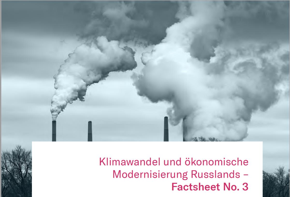 Factsheet Umwelt